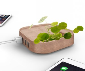 IDEE REGALO ORIGINALI PORTA USB ECO