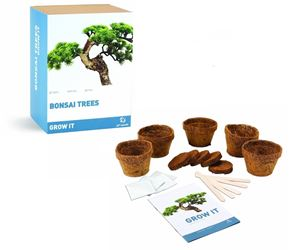 idee regalo originali set per la coltivazione di 5 alberi bonsai